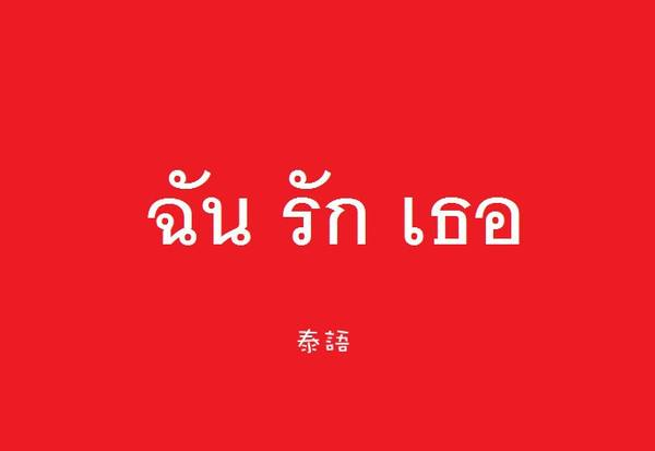 怎样寻找好一点的泰语翻译机构!